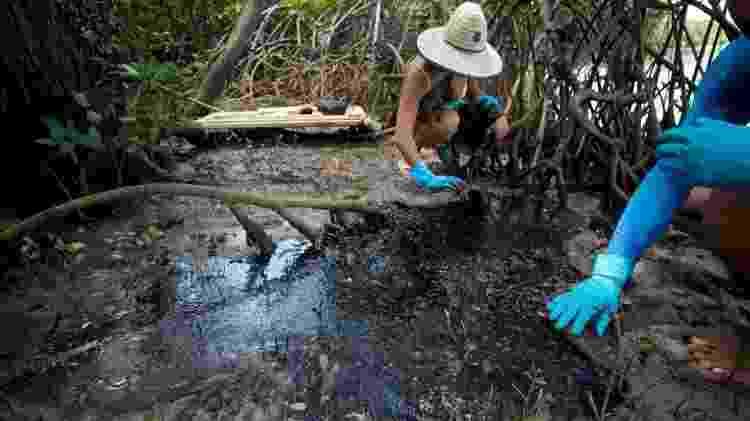Voluntários tentam limpar manguezal afetado por óleo - Pedro Accioly/Divulgação