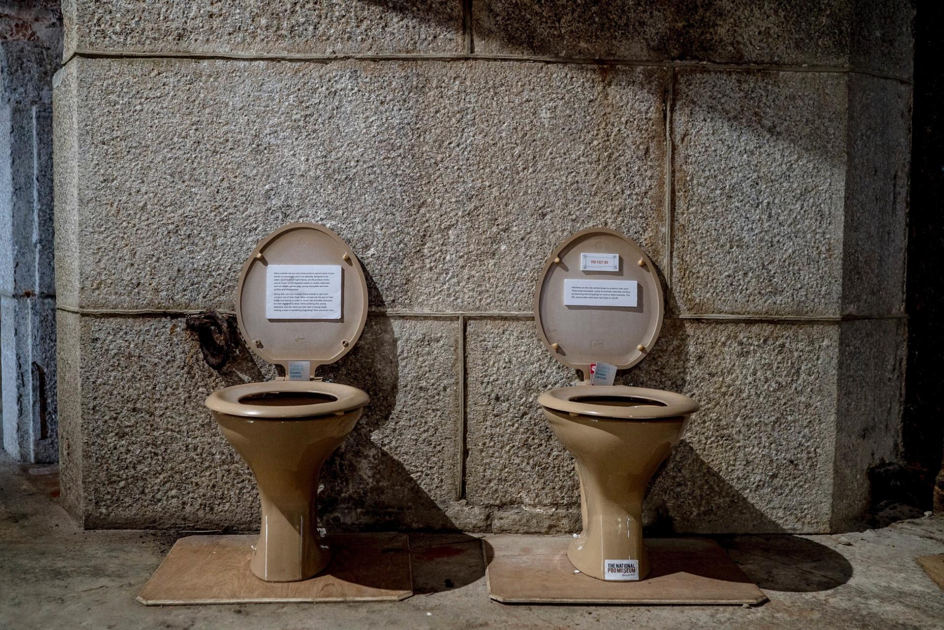As informações das amostras do museu aparecem na tampa de privadas