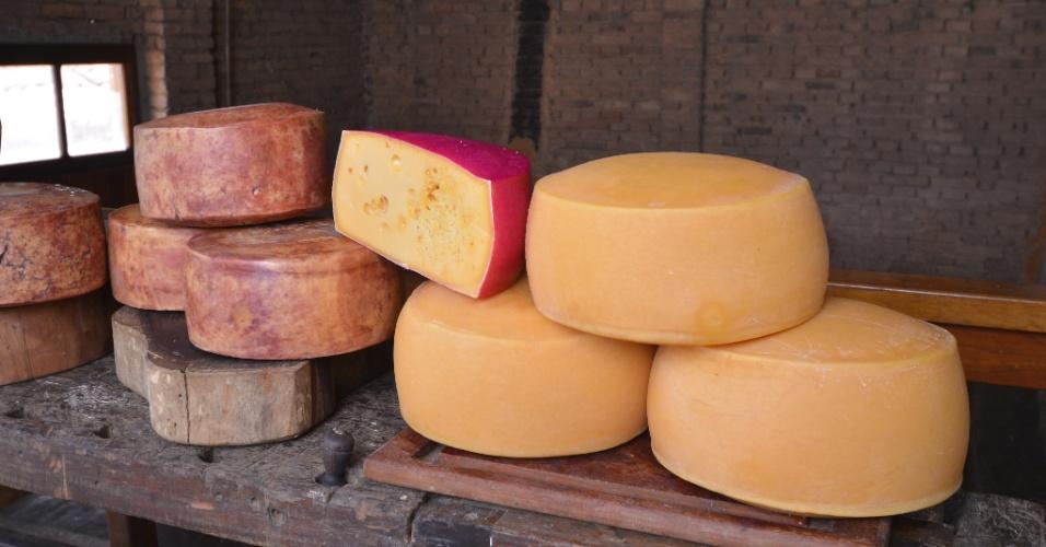 O queijo tulha (mais escuro, à esquerda) ganhou medalha de ouro na 29ª edição do World Cheese Awards, em San Sebastian, na Espanha