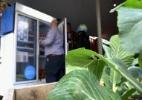 A geladeira pública criada para evitar desperdício de comida em Londres - BBC