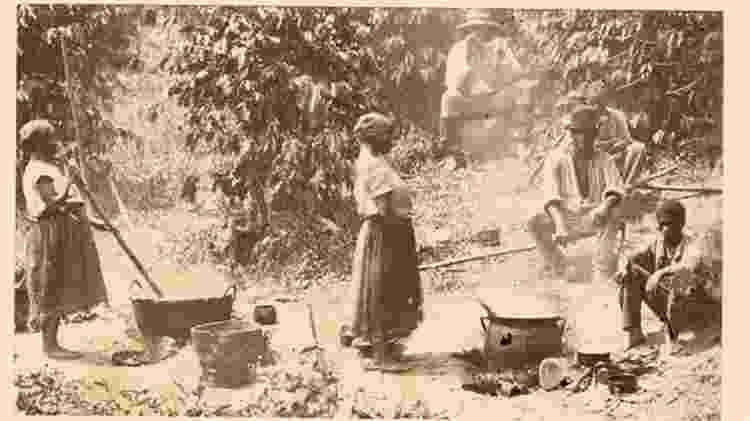 Escravos trabalham em uma plantação de café no Brasil - THE NEW YORK PUBLIC LIBRARY via BBC - THE NEW YORK PUBLIC LIBRARY via BBC