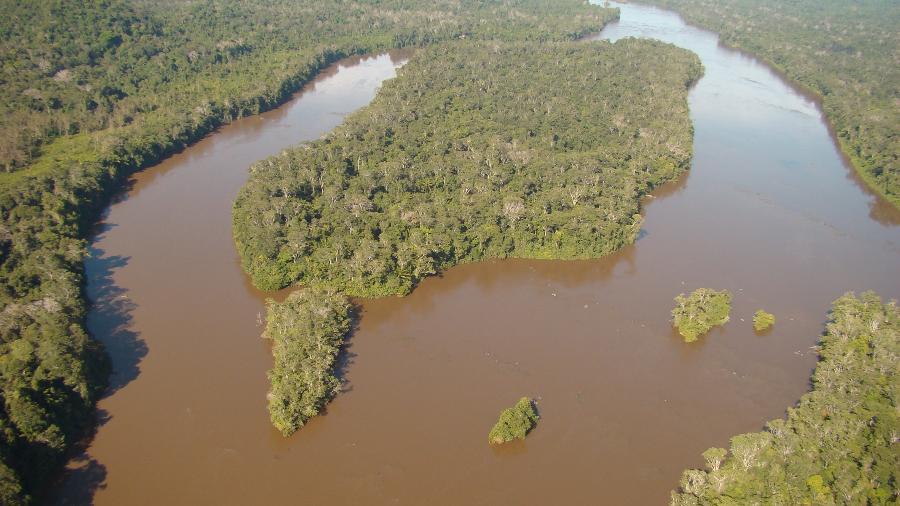 Caso ocorreu na Estação Ecológica de Maracá, em Roraima - Reprodução/ICMBio