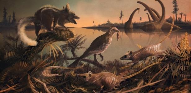 Mamíferos costumavam sair à noite para caçar insetos