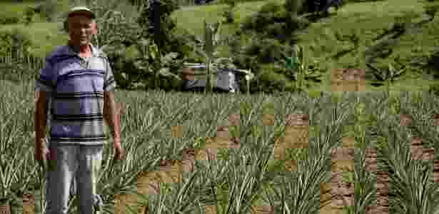 Eduardo Rodrigues tem plantação de abacaxi e maracujá no semiárido - Beto Macário/UOL