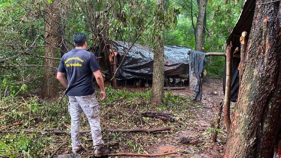Megaoperação flagra trabalho escravo indígena no Mato Grosso do Sul  - AFT