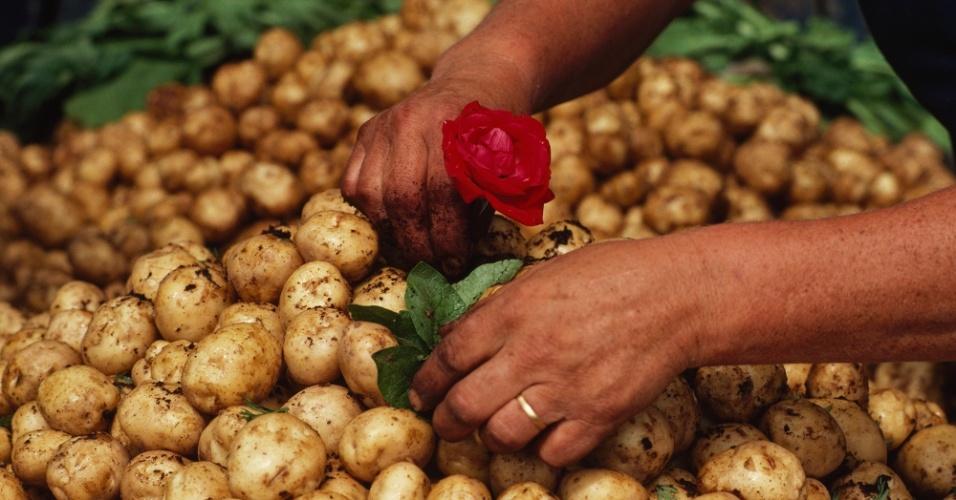 22.abr.2016 - Batatas num mercado de Helsinki, Finlândia. O tubérculo chegou da Alemanha nos anos 1730, e desde então é acompanhamento para peixe, nas tortas de carne ou sozinha, assada ou em purê