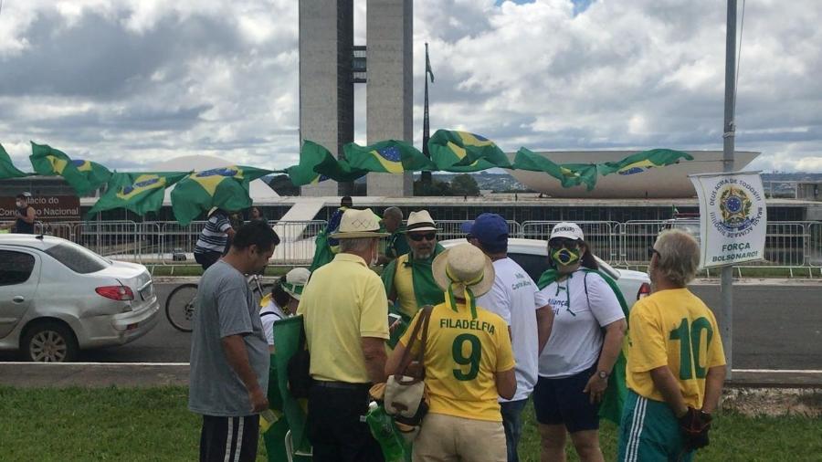 Grupo participa de manifestação pró-governo em Brasília no dia 15 de março - Felipe Pereira/UOL