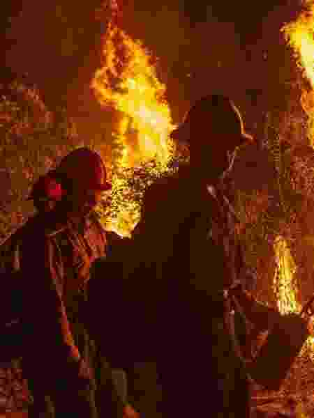 Brigadistas tentam conter incêndio florestal em Arcadia, na Califórnia (EUA), - David McNew/Getty Images/AFP - David McNew/Getty Images/AFP