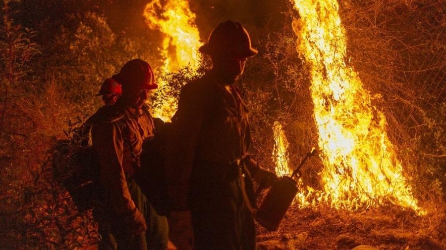 Brigadistas tentam conter incêndio florestal em Arcadia, na Califórnia (EUA), em 13 de setembro de 2020 - David McNew/Getty Images/AFP