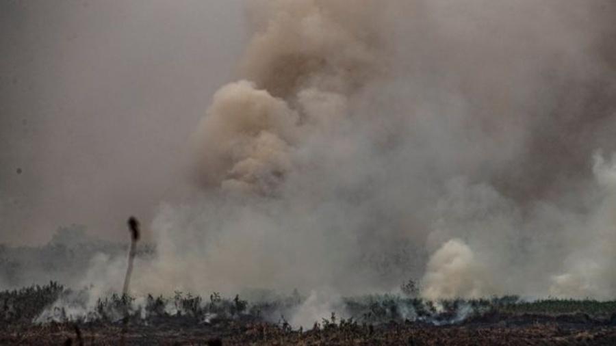 Fumaça e partículas liberadas pelos incêndios são levadas pelo vento a outras regiões - Carlos Ezequiel Vannoni/EPA