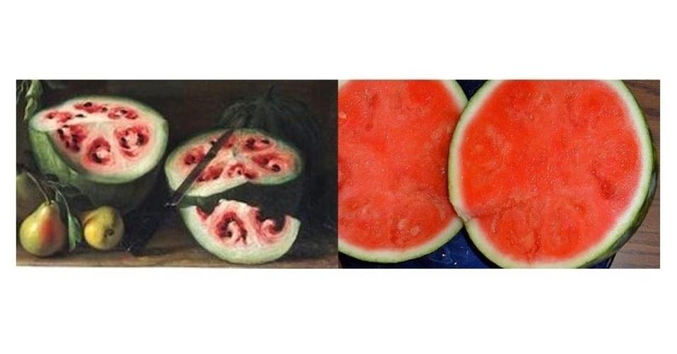 Pinturas do século 17, como a do detalhe de quadro de Giovanni Stanchi (à esq.), mostram como melancias pareciam ser diferentes das encontradas hoje (à dir.)