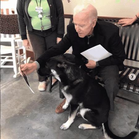 Joe Biden e Major, em postagem no Instagram no dia em que o cão foi adotado pelo presidente eleito, na Delaware Humane Association - Redes sociais