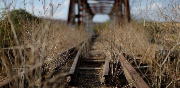 Trecho da ferrovia Transnordestina coberto por vegetação