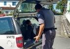 Polícia Militar de Ilha Comprida/Divulgação