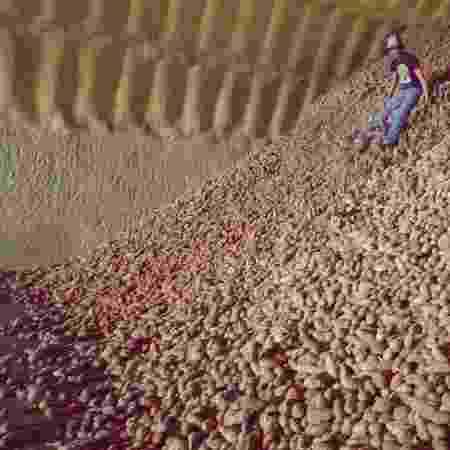 batatas - Reprodução/Business Insider - Reprodução/Business Insider