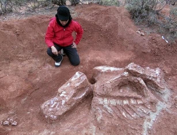 Paleontólogo trabalha em escavações onde foi ecnontrado dinossauro gigante na Argentina