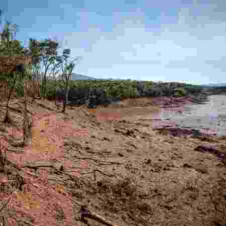 31.jan.2019 - O leito do rio Paraopeba e suas margens foram tomados pela lama que vazou da barragem da Vale em Brumadinho (MG) - Gaspar Nóbrega/SOS Mata Atlântica
