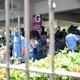 Movimentação de candidatos no entorno de um dos locais de provas do Enem em Recife - JúLIO GOMES/ESTADÃO CONTEÚDO