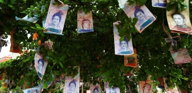 Notas de dinheiro venezuelano são penduradas em árvore em uma rua de Maracaibo - Isaac Urrutia/ Reuters