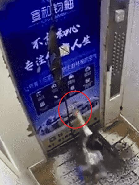 """A criança usava uma guia de segurança no pulso para não se separar de sua cuidadora - Reprodução/People""""s Daily, China"""