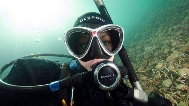 Sheree Marris quer conscientizar sobre a variedade de vida marinha na costa sul da Austrália