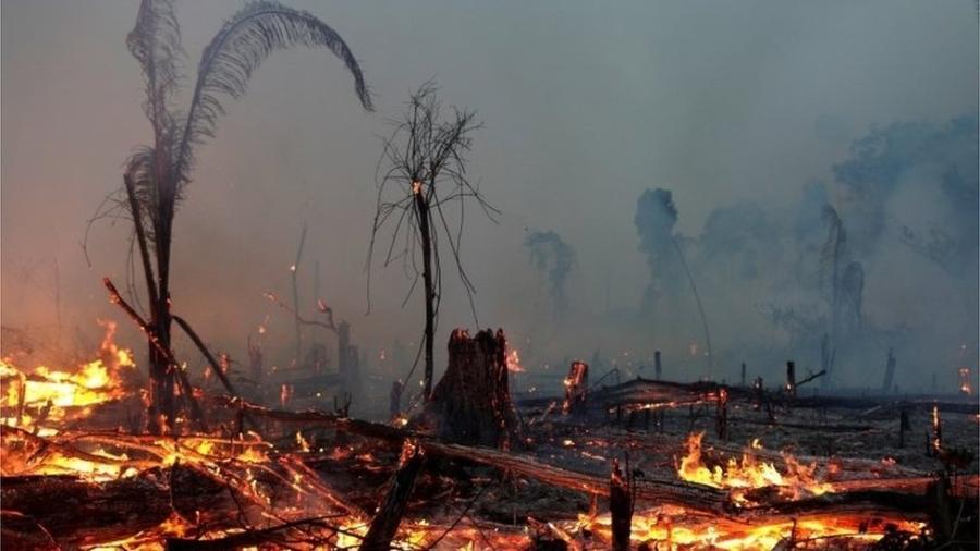 Brasil vai na contramão do mundo e aumenta emissões com desmatamento