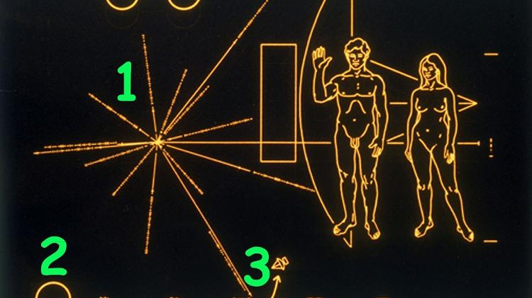 Cada uma das linhas que irradiam do centro indica a direção e a distância de um pulsar em relação ao Sol - Getty Images - Getty Images