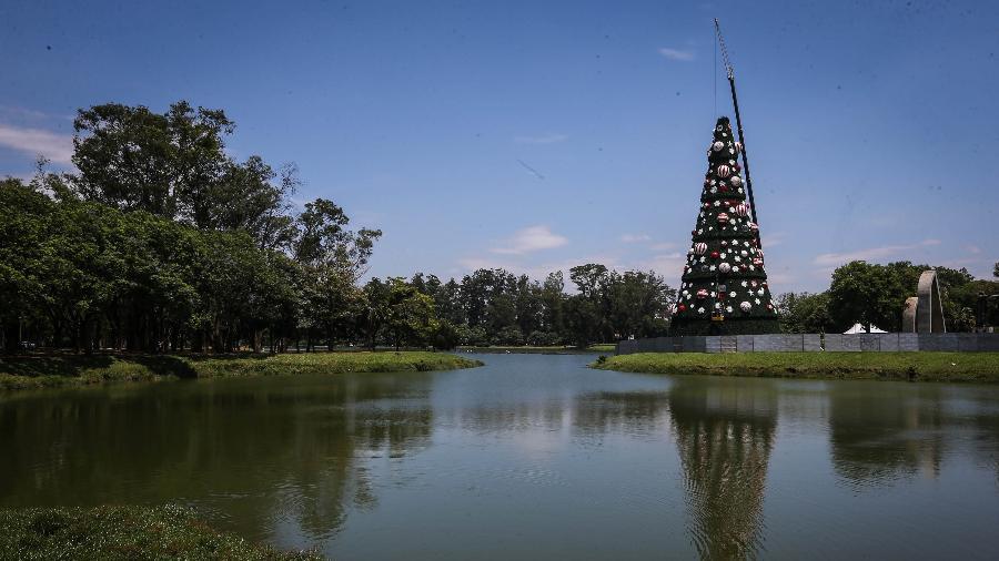 Vista da árvore de Natal do Parque do Ibirapuera, na zona sul de São Paulo. A árvore está ganhando os últimos retoques para poder ser oficialmente inaugurada no próximo dia 1º de dezembro. Este ano a árvore está três metros maior do que em 2017. Serão 43 m de altura por 15,5 metros de diâmetro. - Felipe Rau/Estadão Conteúdo
