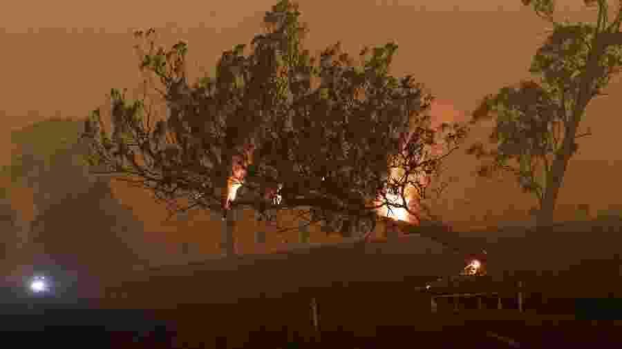 Incêndio florestal em Nova Gales do Sul, na Austrália - TRACEY NEARMY