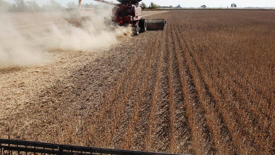 China, maior compradora de soja do mundo, importou 100,33 milhões de toneladas da oleaginosa em 2020 - Reuters