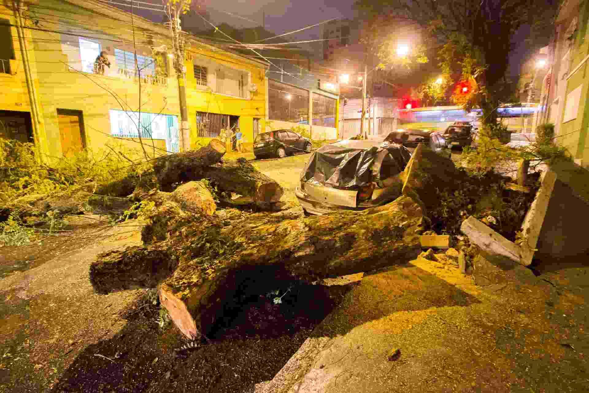 28.set.2015 - Carros ficam danificados após serem atingidos por uma grande árvore nesta madrugada na rua Vespasiano, na Vila Romana, zona oeste de São Paulo - Nivaldo Lima/Futura Press/Estadão Conteúdo