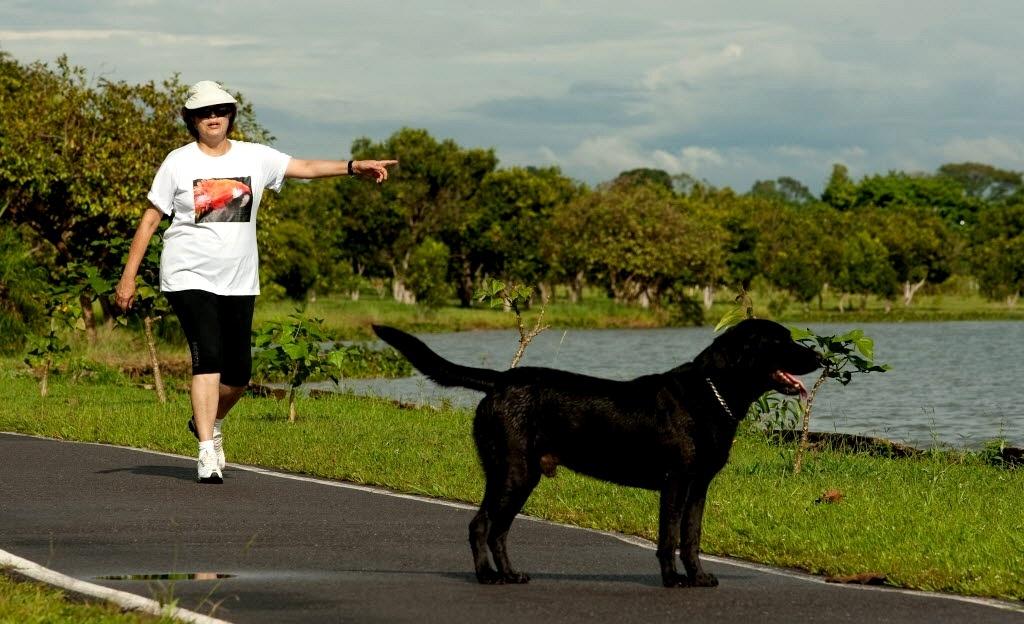 12.set.2016 - Imagem datada de dezembro de 2010 mostra a ex-presidente Dilma Rousseff caminhando na península dos Ministros, área nobre de Brasilia, com o cachorro Nego, que ganhou do ex-ministro José Dirceu