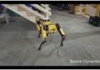 Inspirada em animais, nova robótica quer integrar melhor máquinas e humanos (Foto: Reprodução/YouTube)