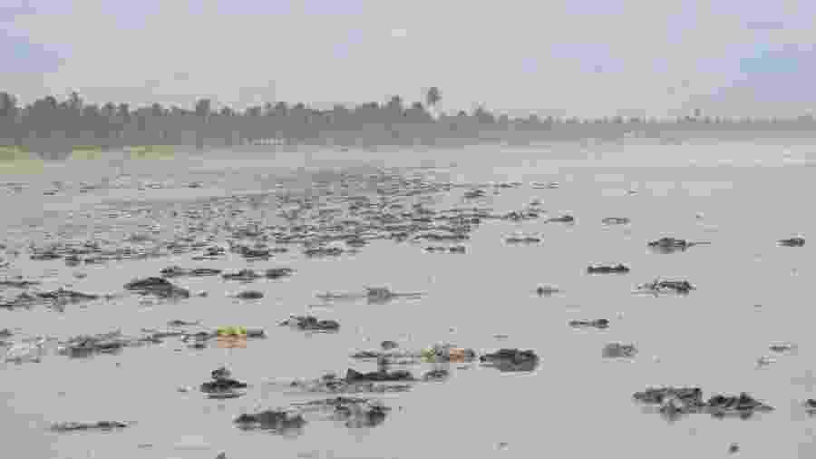 Manchas de óleo na praia de Feliz Deserto, em Alagoas - Raquel Grison/Laboratório de Morfologia Sistemática e Ecologia de Aves do Museu de História Natural da Ufal
