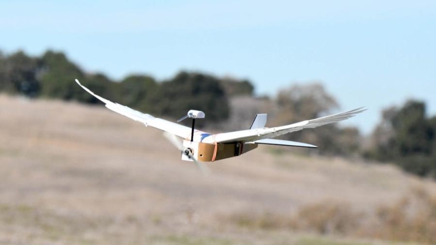 O robô possui um GPS e uma placa de controle remoto - Science News