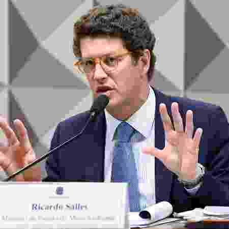 Foto de arquivo - O ministro do Meio Ambiente, Ricardo Salles - Jefferson Rudy/Agência Senado