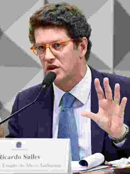 O ministro do Meio Ambiente, Ricardo Salles, em audiência no Senado - Jefferson Rudy/Agência Senado