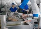 Robôs da cozinha estão mais perto de manusear copos de vidro como humanos (Foto: Divulgação/ Miso Robotics)