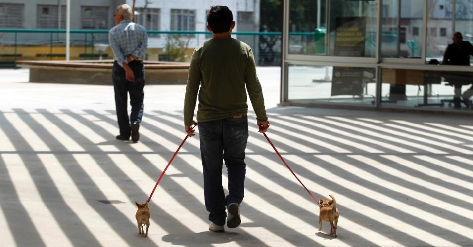 Homem leva cães para passear na praça Rossevelt, no centro de São Paulo