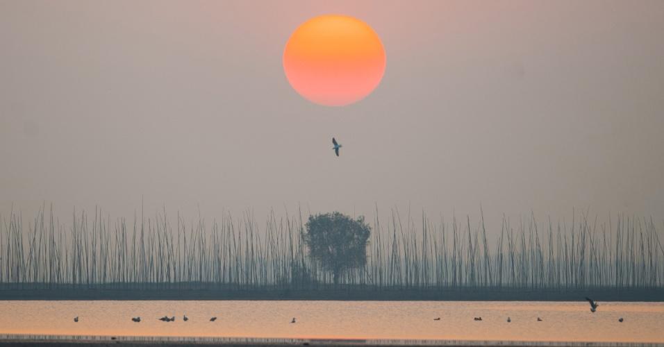 15.dez.2016 - Bando de pássaros migratórios voam sobre o lago Shengjin, na cidade de Chizhou, província de Anhui (China)
