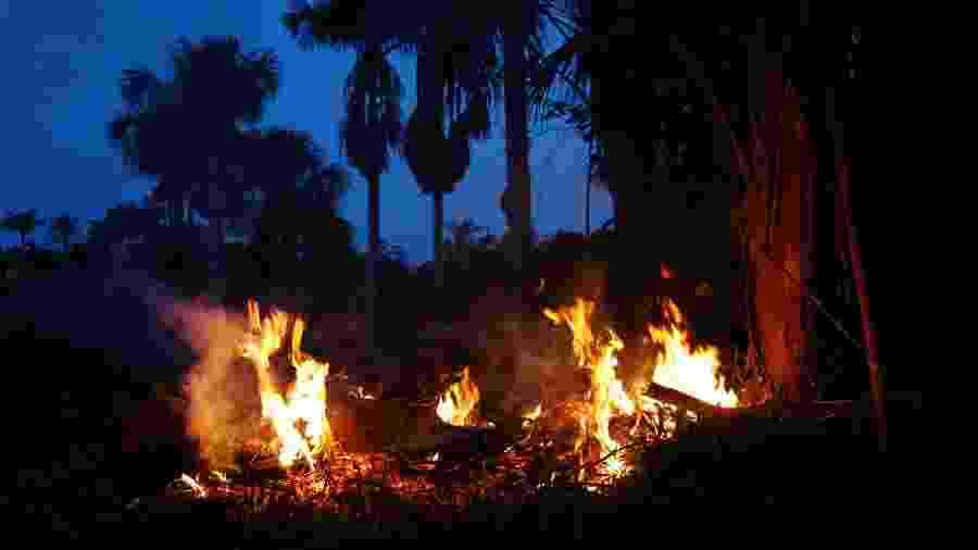 Homem tenta apagar foco de queimada na zona rural do município de Iranduda (AM). A cidade é uma das que estão em estado de emergência na região metropolitana de Manaus - Edmar Barros/Futura Press/Futura Press/Estadão Conteúdo