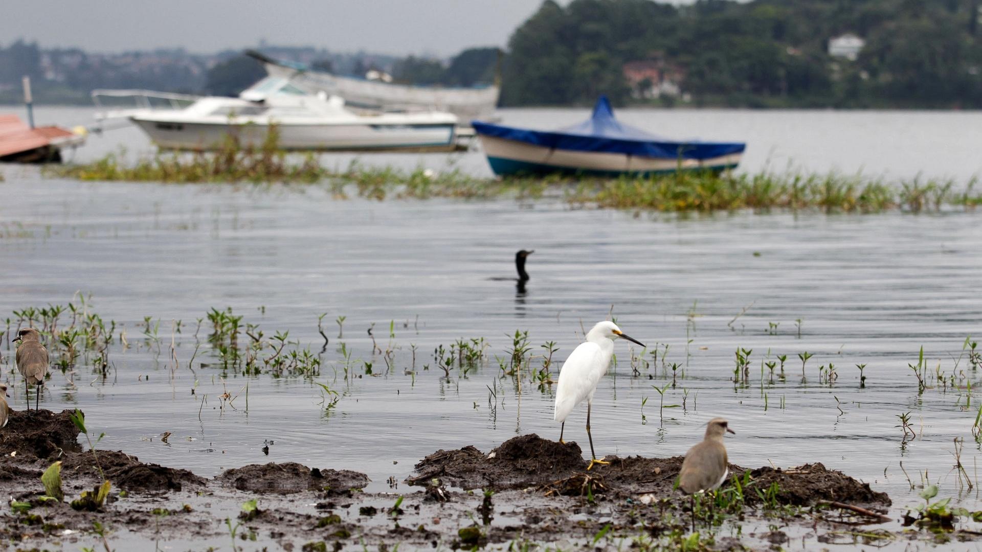 22.jan.2016 - Vista da represa Guarapiranga, na zona sul da capital paulista