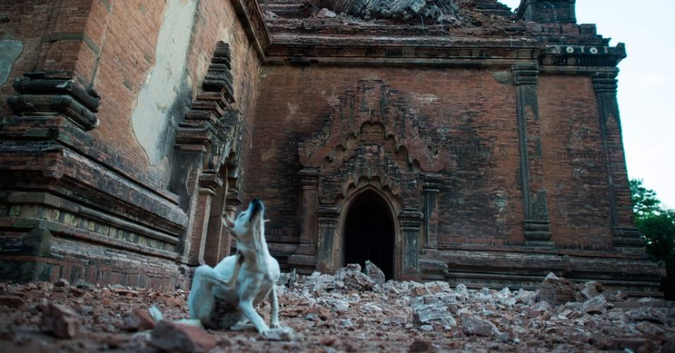 25.ago.2016 - O templo Sulamani, localizado no sítio arqueológico de Bagan, em Mianmar, ficou danificado após um terremoto de magnitude 6,8 na escala Richter atingir o país e danificar quase cem templos centenários da região