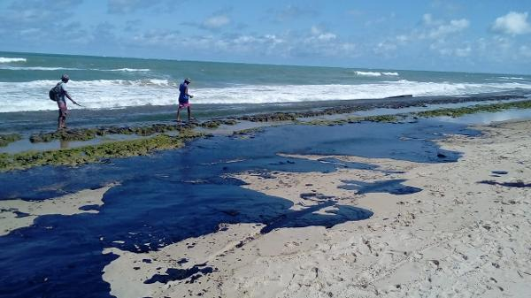 Resultado de imagem para foto de mancha de óleo na praia