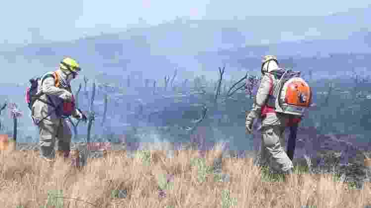 Bombeiro combatem incêndio na Chapada dos Veadeiros, em Goiás - Divulgação/Corpo de Bombeiros -23.set.2021 - Divulgação/Corpo de Bombeiros -23.set.2021