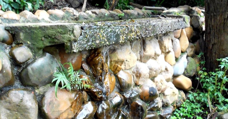 O parque da Aclimação, na região central, tem várias nascentes. Uma delas recebeu um projeto paisagístico e alimenta o tanque de um jardim japonês, próximo ao lago do parque. As nascentes formam o riacho da Aclimação, afluente do rio Tamanduateí
