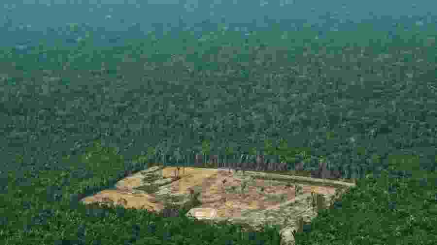 Amazônia perdeu 50 mil km² de matas nos últimos 7 anos - AFP