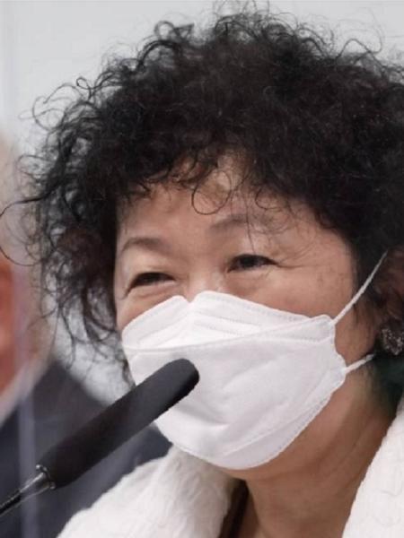 Nise Yamaguchi durante depoimento à CPI - Pablo Jacob/O Globo