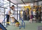 A academia SP/UP, em São Paulo, tem espaço de recreação para cachorros - Reinaldo Canato/UOL