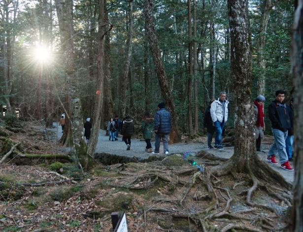 Turistas visitam a floresta de Aokigahara, no Japão, próxima ao Monte Fuji